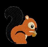 Eichhörnchen rechts