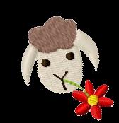 Schaf links