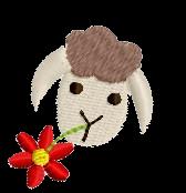 Schaf rechts