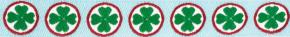 Webband Kleeblaetter gruen